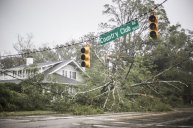 A fallen tree lies in front of a house during Hurricane Florence in Wilmington, North Carolina, U.S., on Friday, Sept. 14, 2018. Hurricane Florence weakened to a tropical storm, trudging through the Carolinas at 3 miles per hour as it unloaded pelting rain and floods that killed at least three people. Photographer: Alex Wroblewski/Bloomberg via Getty Images