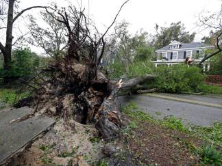 A tree uprooted by strong winds lies across a street in Wilmington, N.C., after Hurricane Florence made landfall Friday, Sept. 14, 2018. (AP Photo/Chuck Burton)