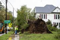 Emergency workers inspect a power line that was damaged by a tree uprooted by Hurricane Florence in Mount Olive, N.C., Sunday, Sep. 16, 2018.