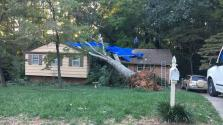 hurricanematthew-treeonhouse_750xx4032-2268-0-378